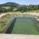 Teich Sanierung