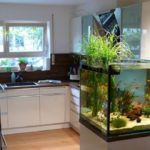 Aquarium in Küche